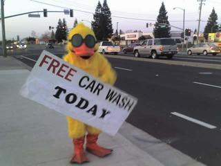 Quick Quack Car Wash Bird