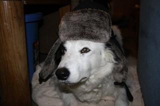 Max N Hat