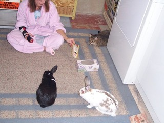 Emily,Rosie,Whiskers & my wife Barb