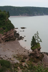 Fundy Bar 081