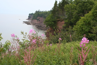 Fundy Bar 071