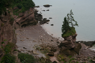 Fundy Bar 082