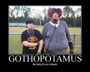 Gothopotamus