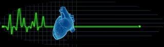 Heart Ecg Concept
