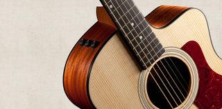 100 Series Neck Taylor Guitars Large