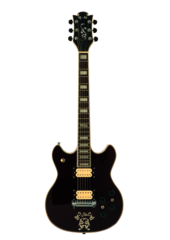 Electric Guitar Stock Png By Doloresdevelde D5at701