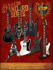 Esp 2009 New Standards2 Ad