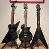 The ESP family