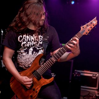 Dan Gargiulo (Revocation) LTD H-1007 Baritone Koa