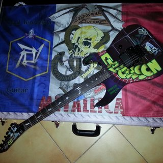 Metallica 's french chapter flag with my nosfe