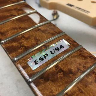 ESP USA TE-II